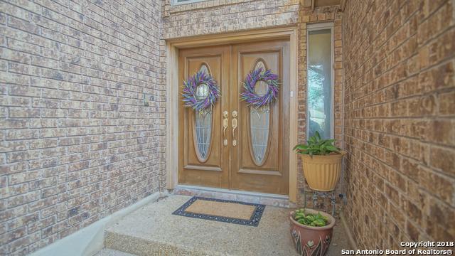 19110 W Birdsong, San Antonio, TX 78258 (MLS #1298461) :: Alexis Weigand Real Estate Group