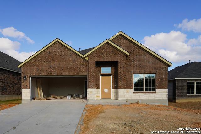 16311 Amistad Pass, San Antonio, TX 78247 (MLS #1329830) :: The Mullen Group | RE/MAX Access