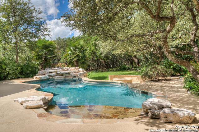 306 Champion Falls, San Antonio, TX 78258 (MLS #1342578) :: The Suzanne Kuntz Real Estate Team