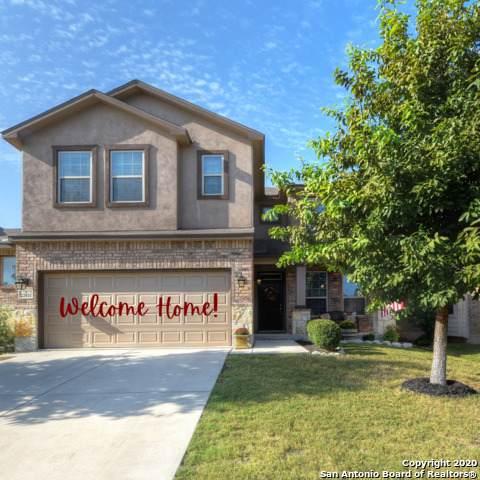 22911 Malabar Peak, San Antonio, TX 78261 (MLS #1489838) :: Alexis Weigand Real Estate Group