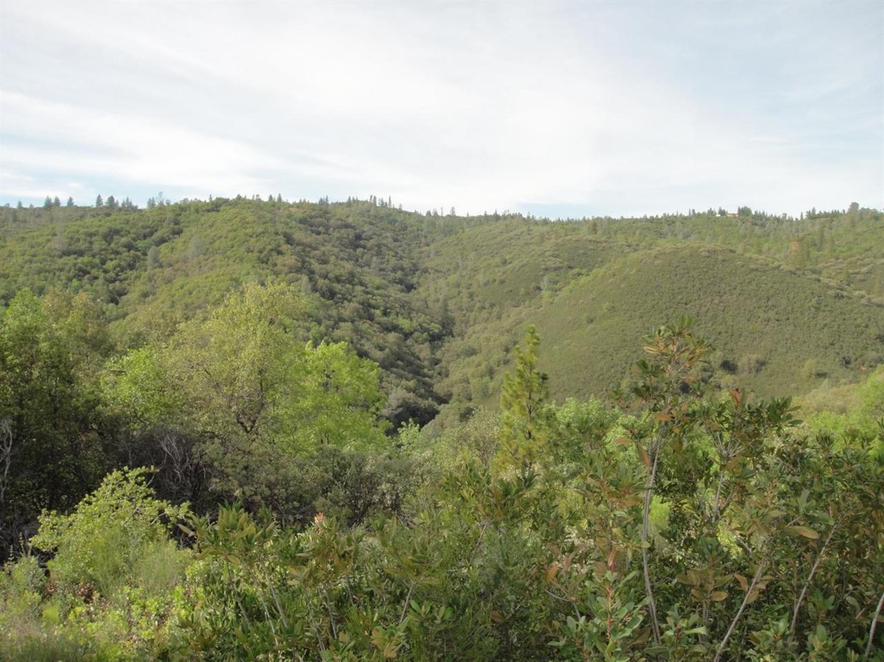 250 - Acres Sheep Ranch Road - Photo 1