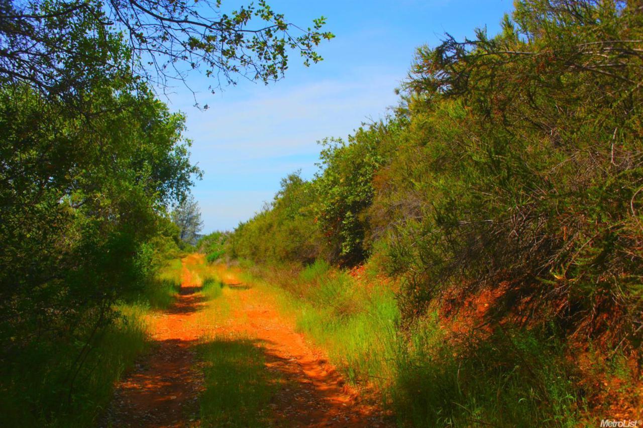 6400 Mount Murphy Road - Photo 1