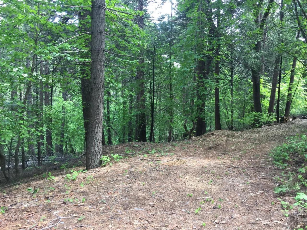 4220 Pegasus Trail - Photo 1
