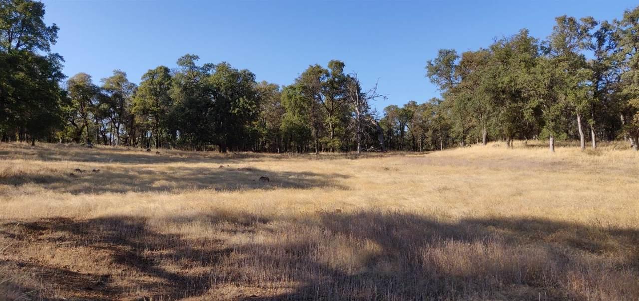 11001 Oak Mesa Drive - Photo 1