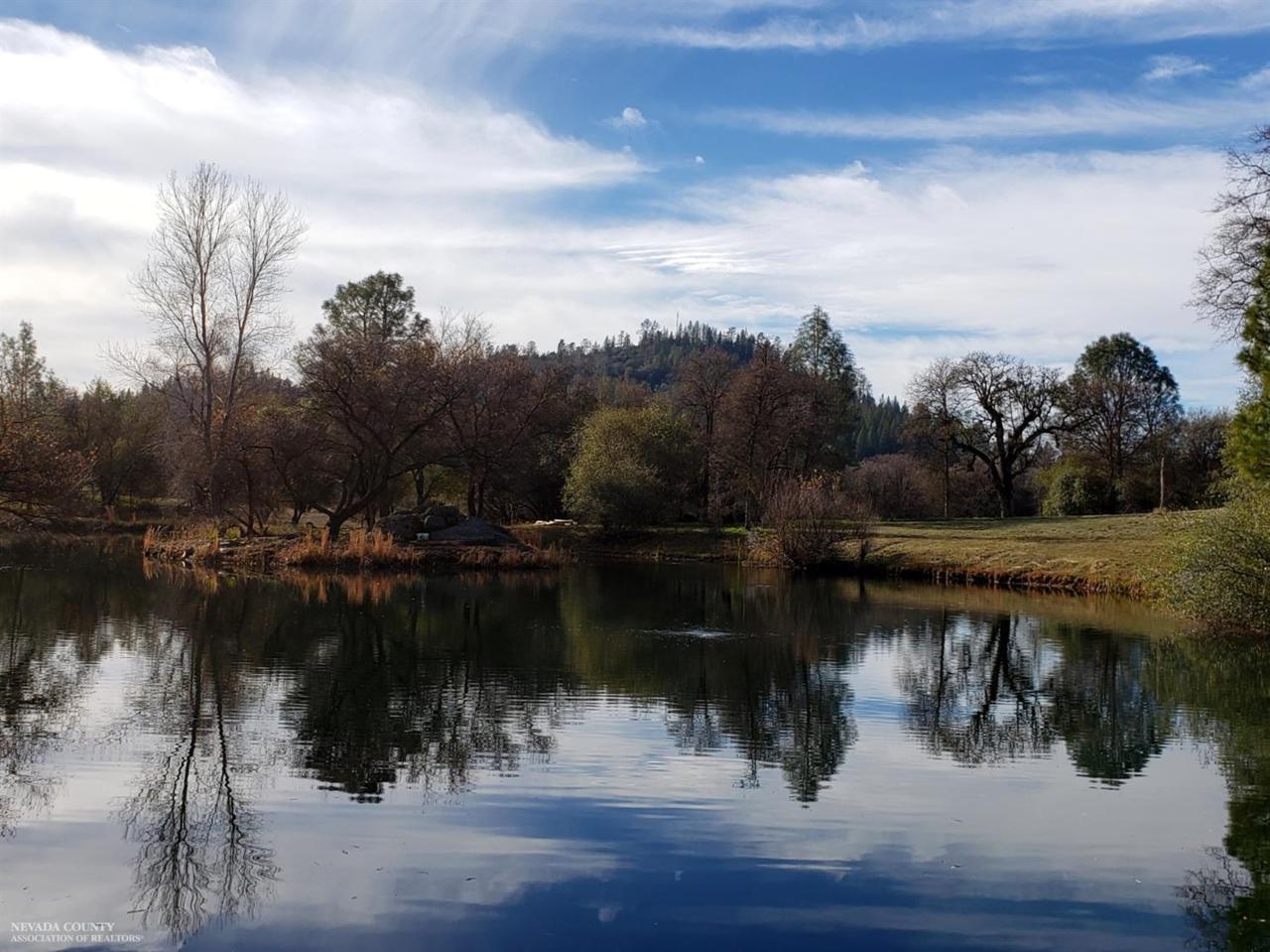 11767 Vineyard Lakes Drive - Photo 1
