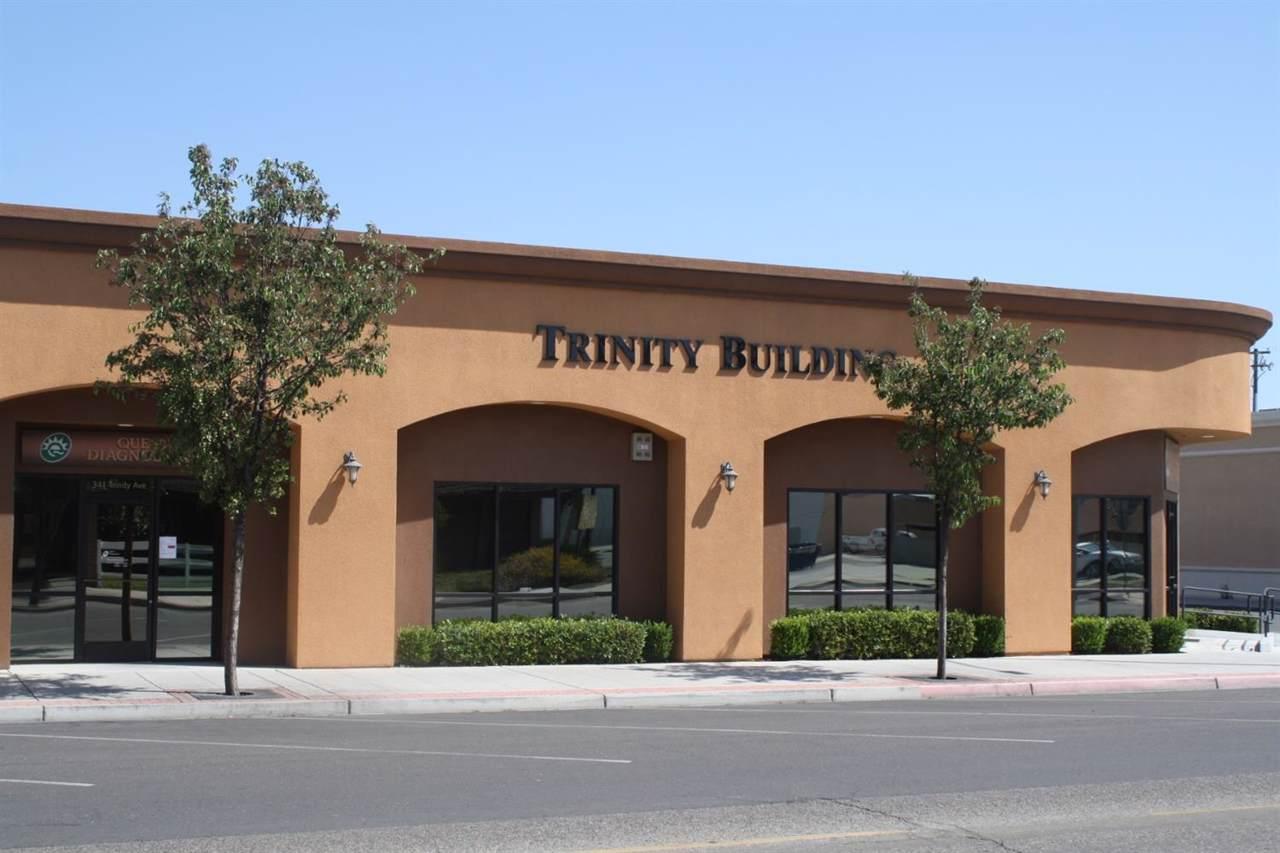 341 Trinity Avenue - Photo 1
