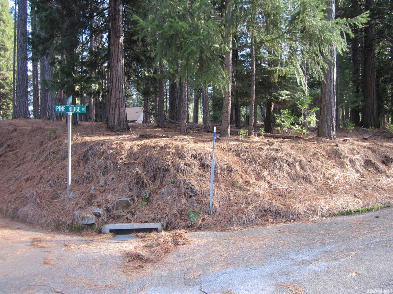 5476 Pine Ridge Drive - Photo 1