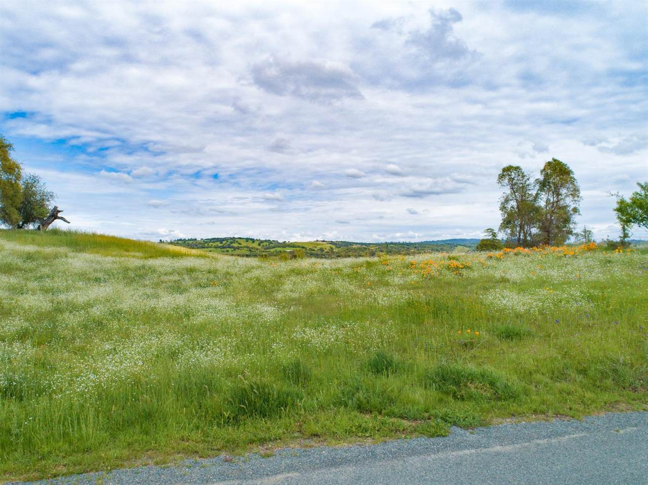 3135 Meadow Creek Road - Photo 1
