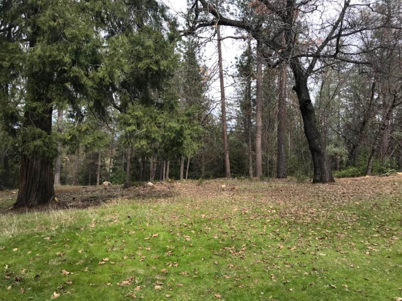 1772-Lot 307 The Point Road - Photo 1
