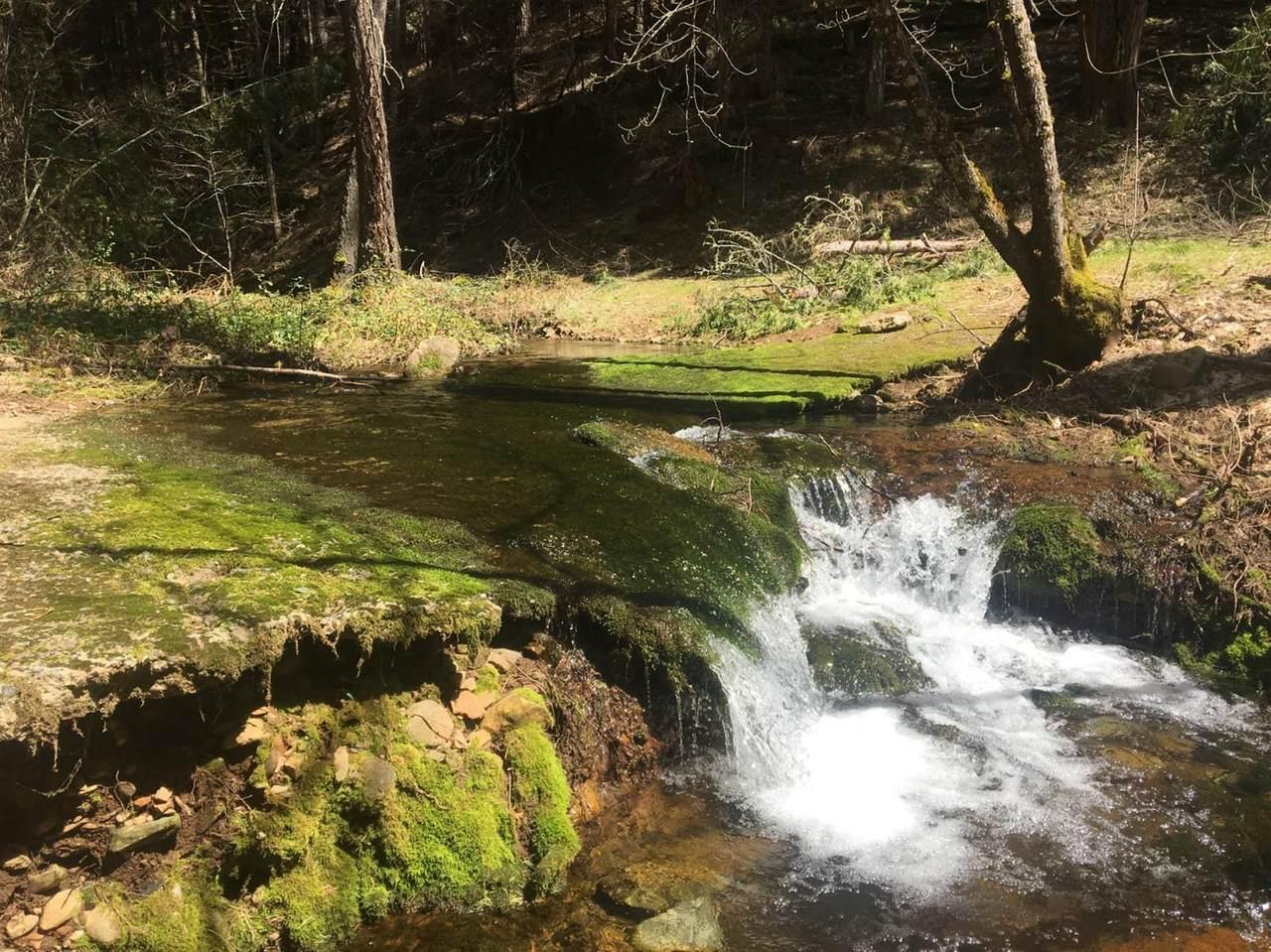 4952 Sierra Springs Drive - Photo 1