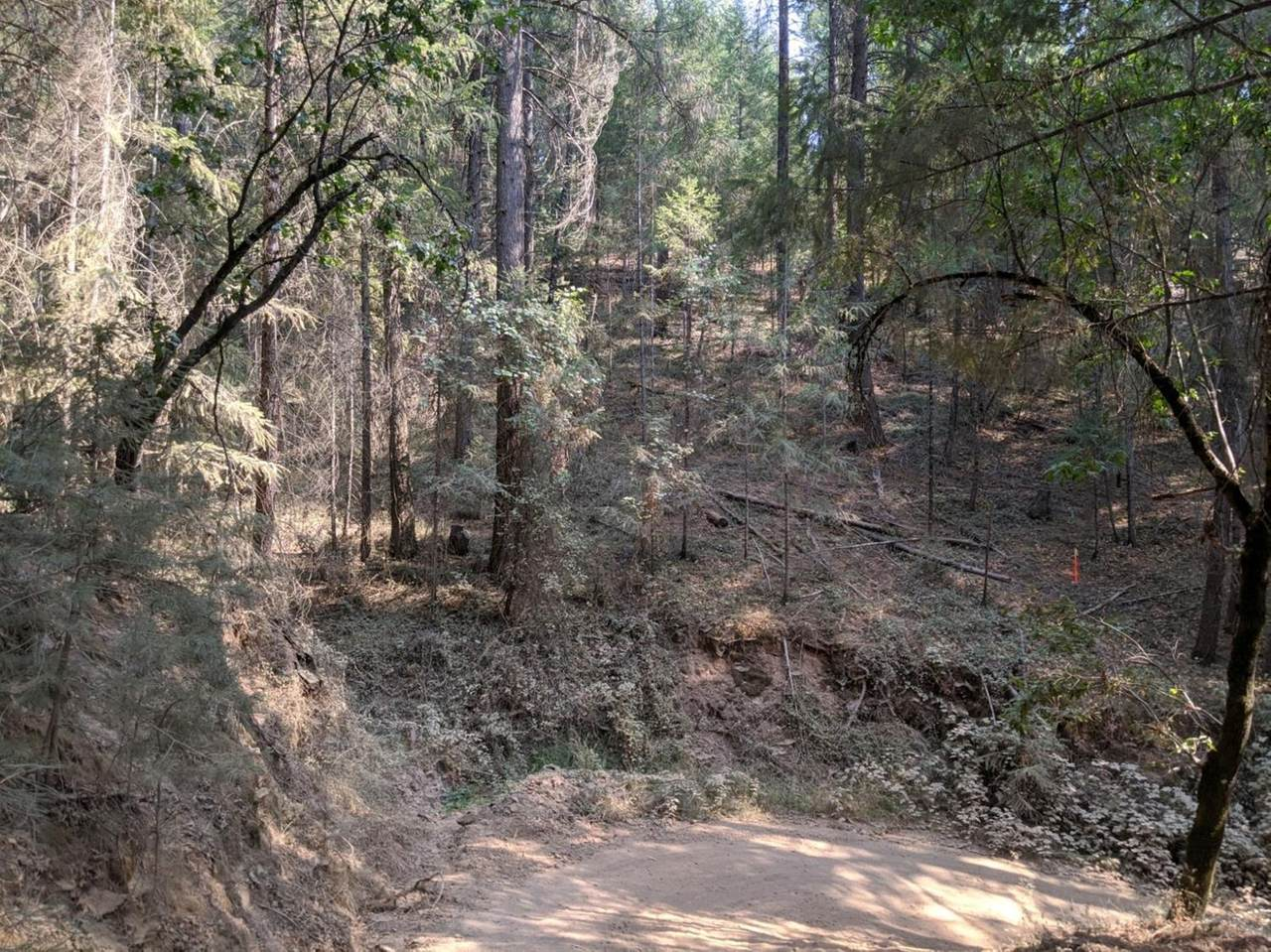 14485 Arrowhead Mine Road - Photo 1