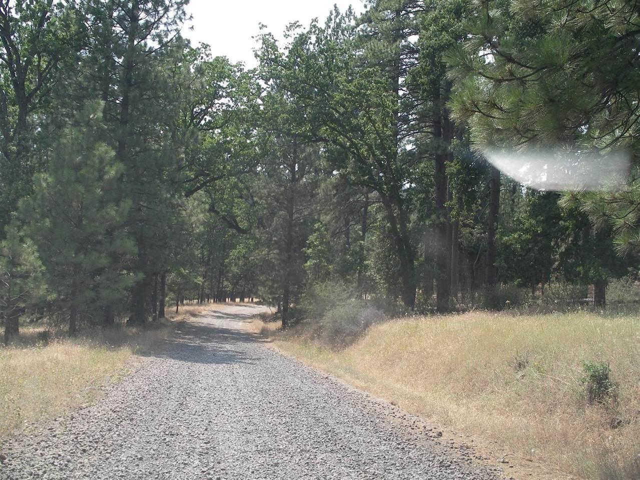 0 Buchanan Road - Photo 1
