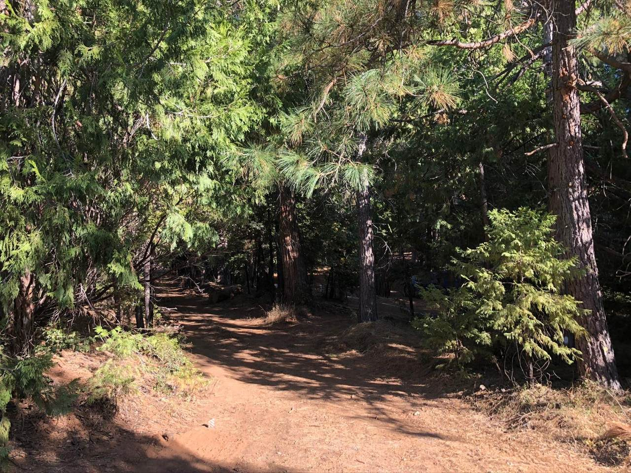23561 Stagecoach Road - Photo 1
