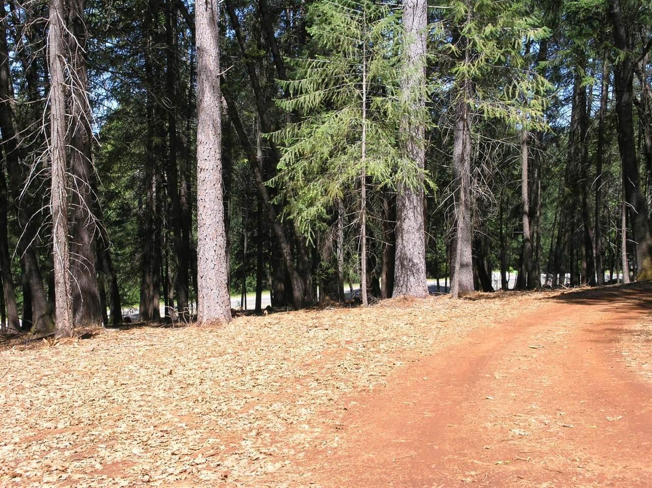 11881 Banner Lava Cap Road - Photo 1