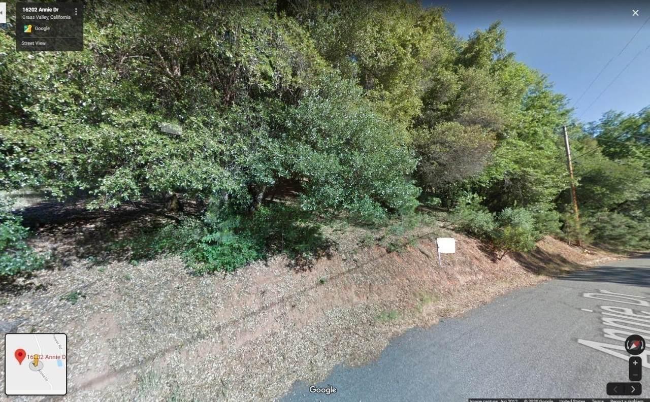 16202 Annie Drive - Photo 1