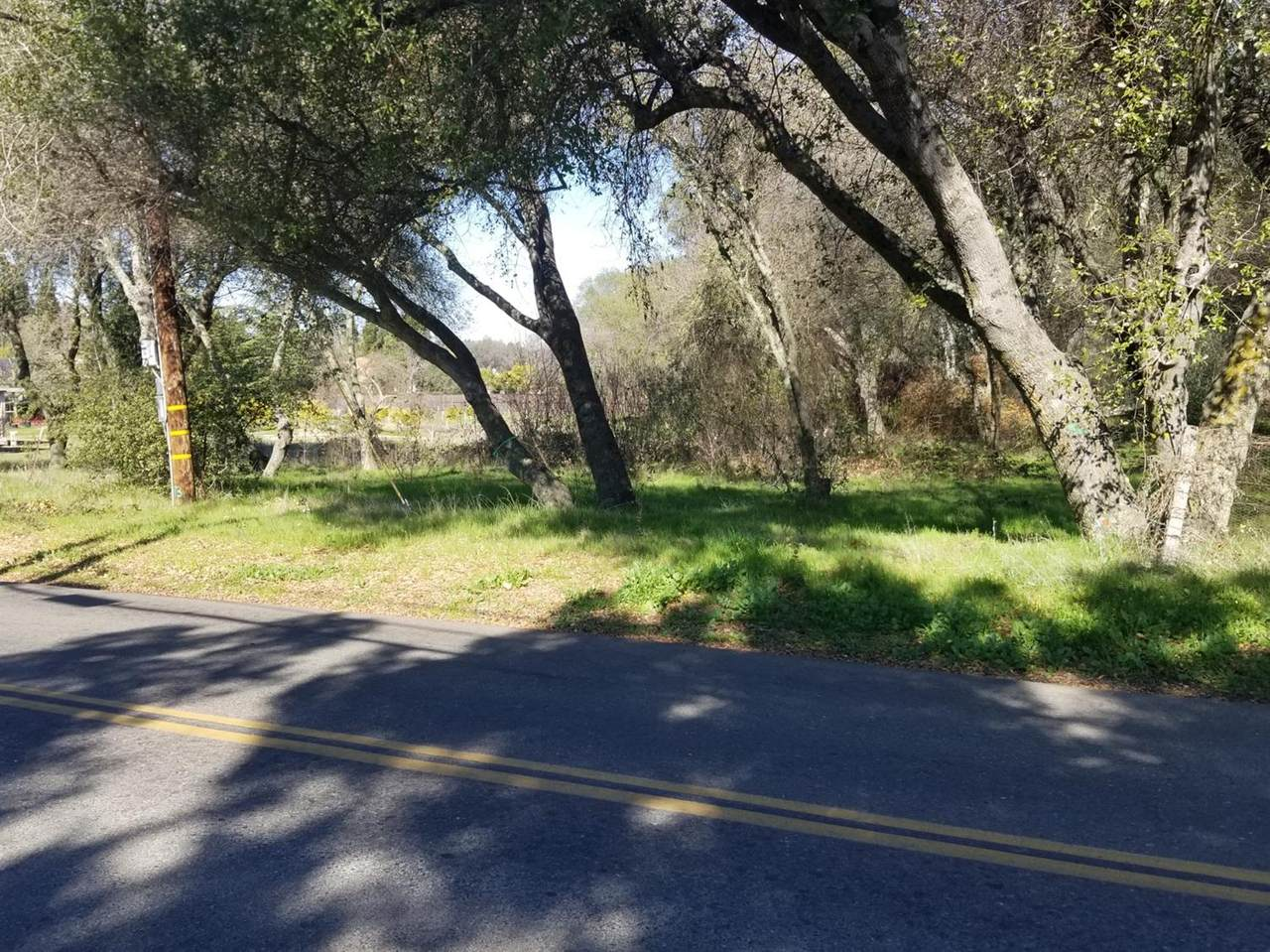 0 Olive Ranch Road - Photo 1