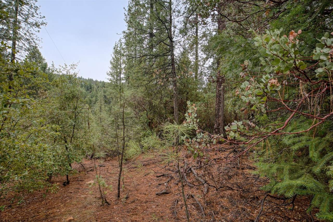 21670 Clute Canyon Road - Photo 1