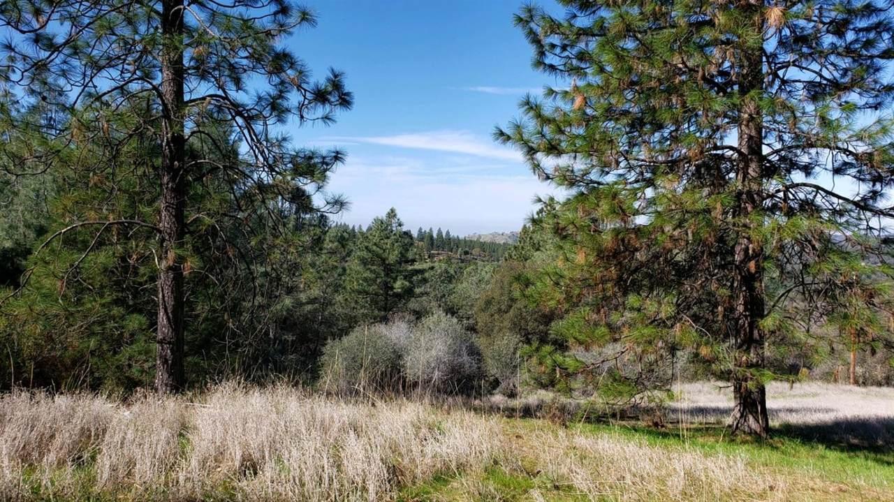 0 Sourdough Trail - Photo 1
