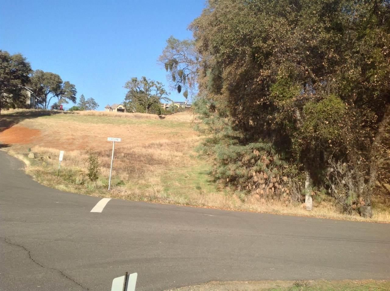 23725 Hogan Road - Photo 1