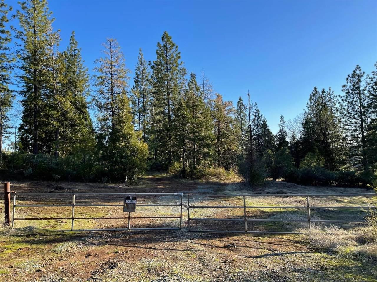 0 Omo Ranch Road - Photo 1