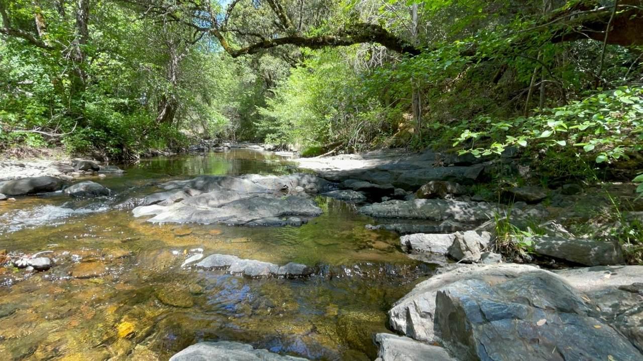 0 Sutter Creek Road - Photo 1