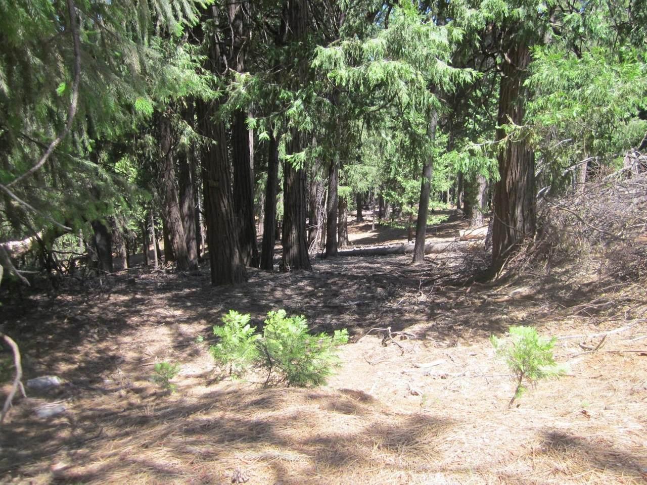 5407 Pine Ridge Drive - Photo 1