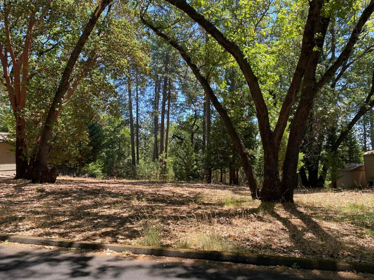 5937 Silverleaf Drive - Photo 1