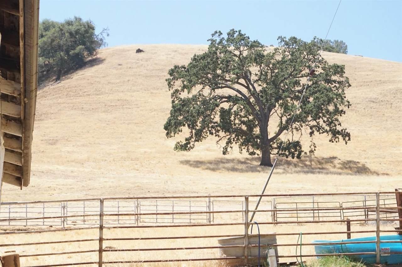 21201 California 49 - Photo 1