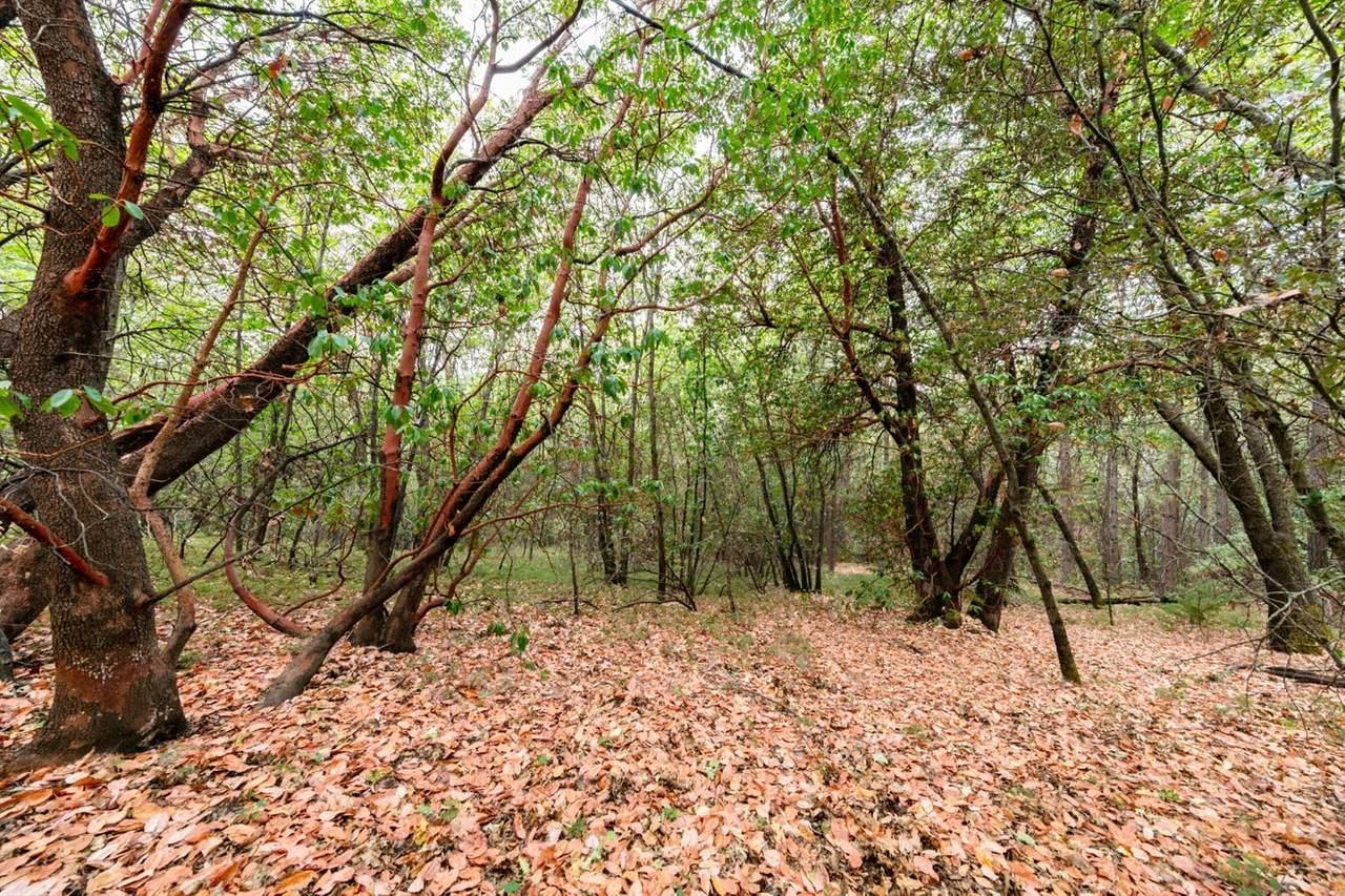 5588 Pine Ridge - Photo 1