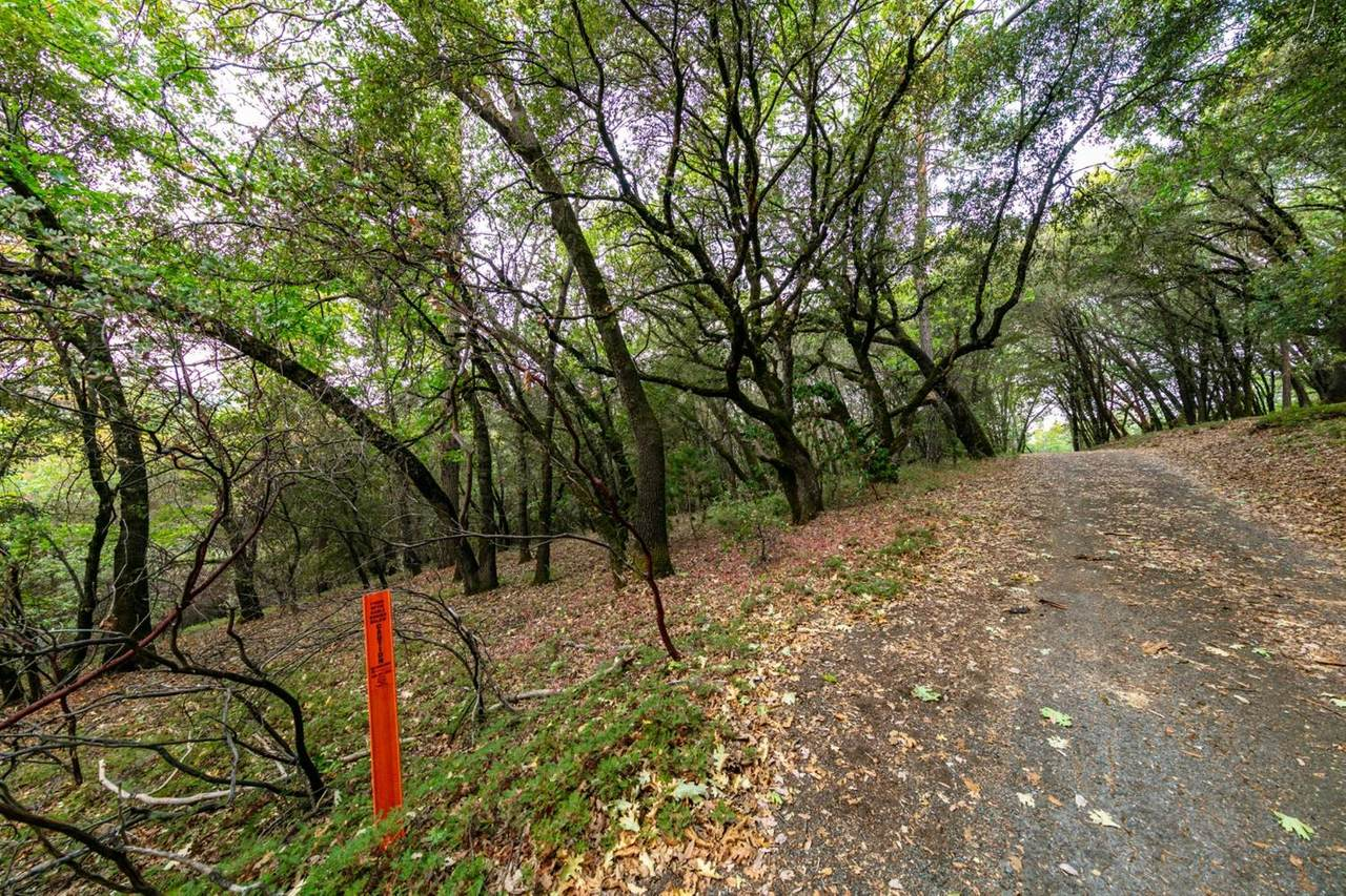 5585 Pine Ridge Road - Photo 1