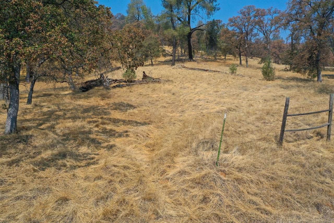 53 Deer Hollow Trail - Photo 1