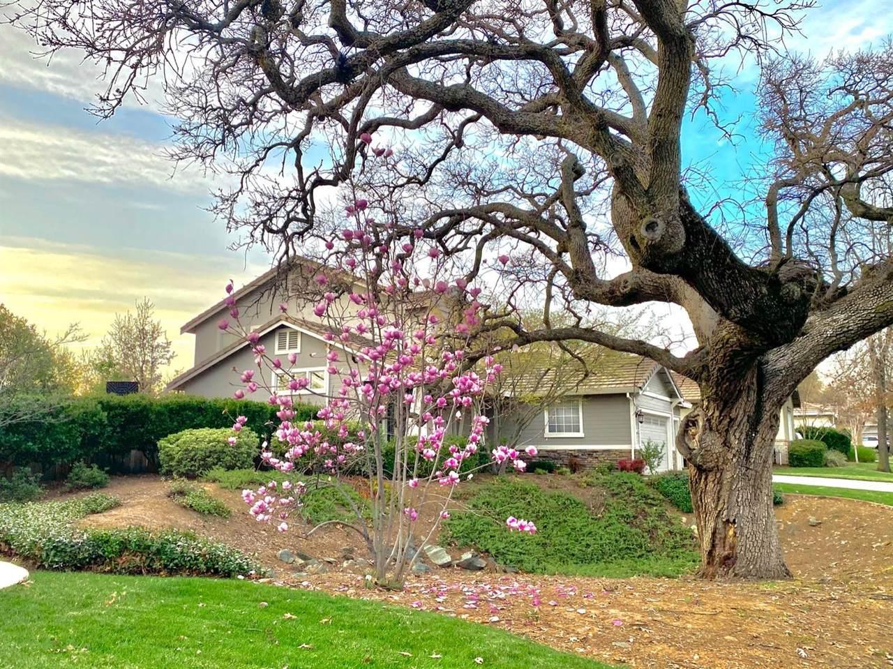 3254 Stonehurst Drive - Photo 1