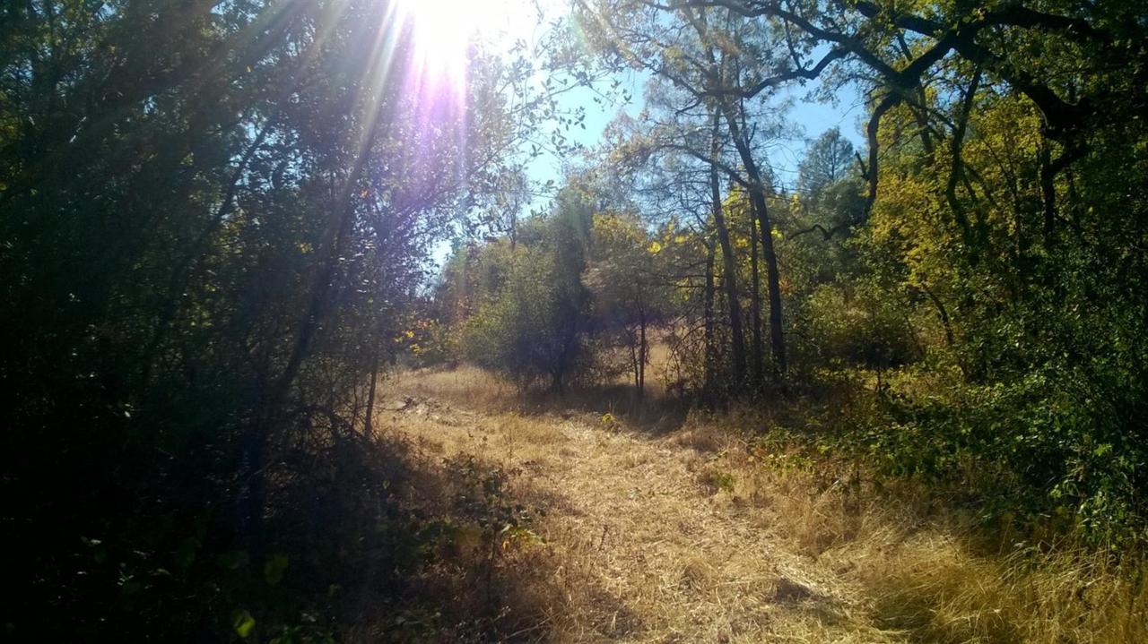 145 Mount Aukum Road - Photo 1