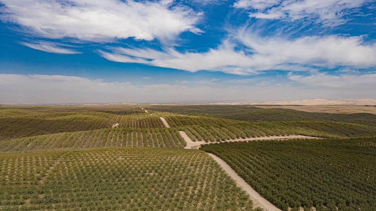 18300 Los Cerritos Road - Photo 1
