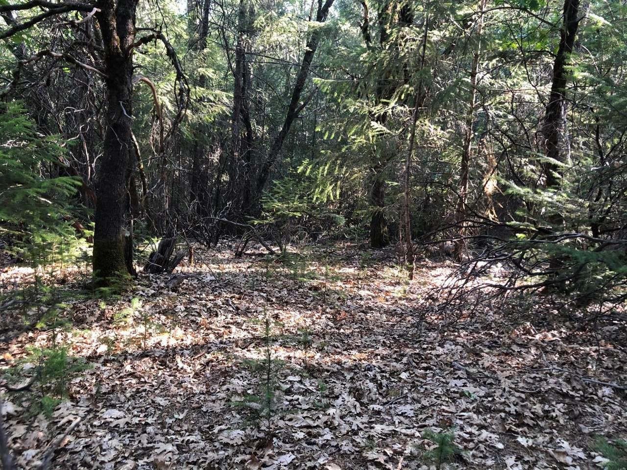 6170 Green Oak Court - Photo 1