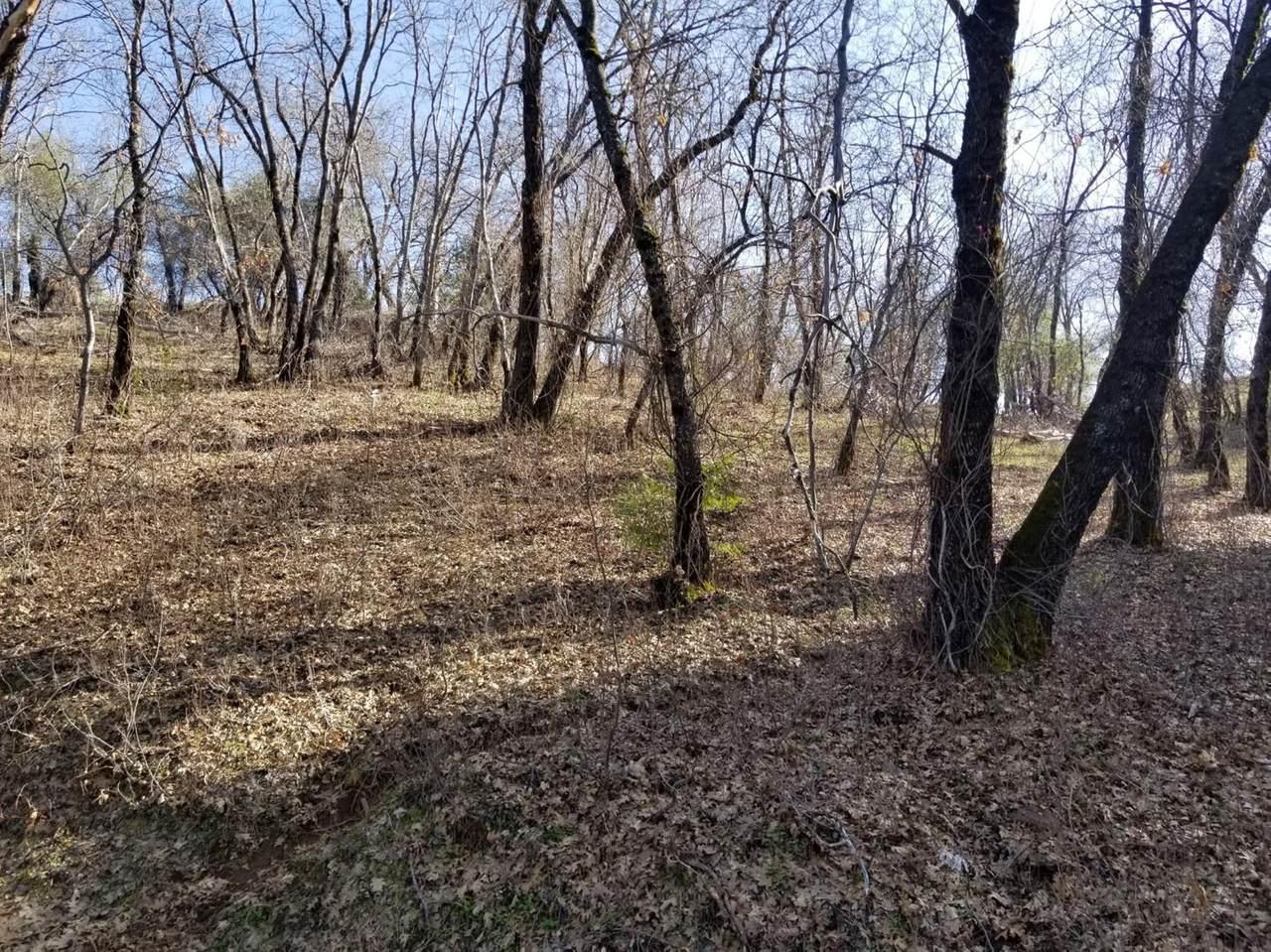 0 Oak Tree - Photo 1