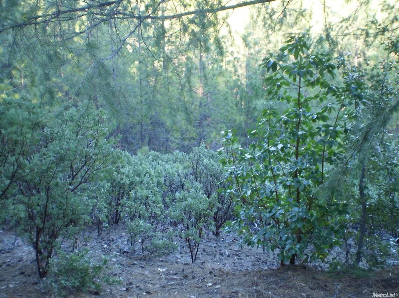 0 Darling Ridge/Balderston - Photo 1