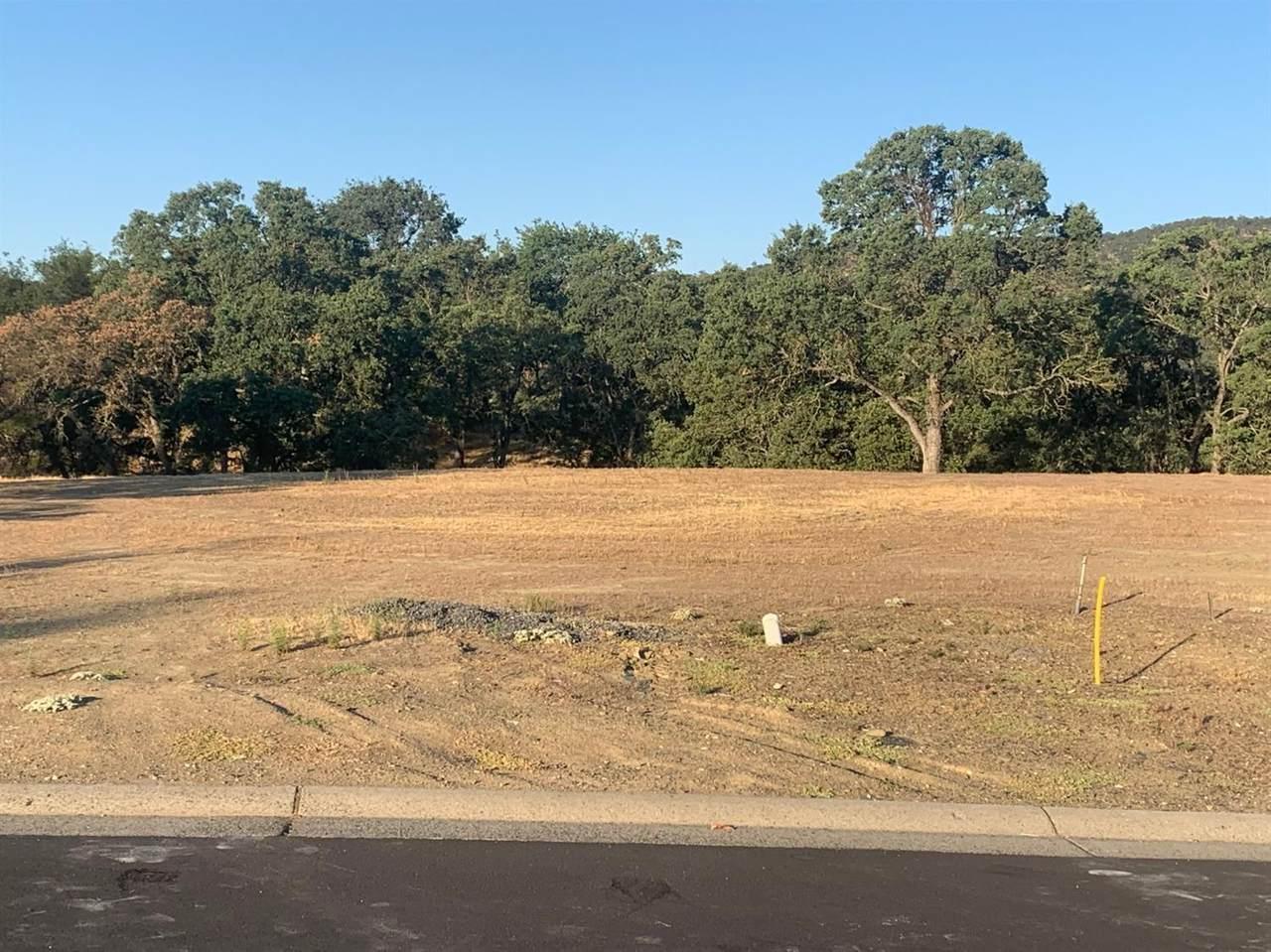 156 Blue Oak Court - Photo 1