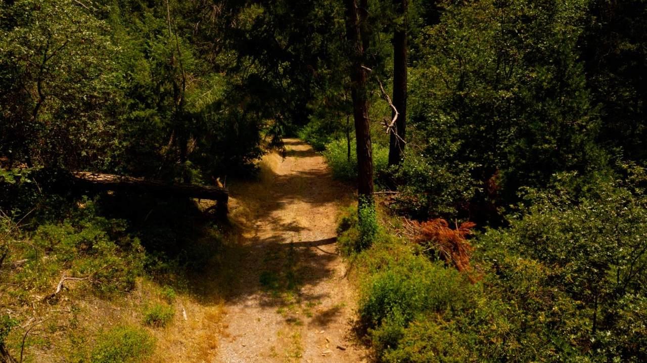 0 Inagahee Road - Photo 1