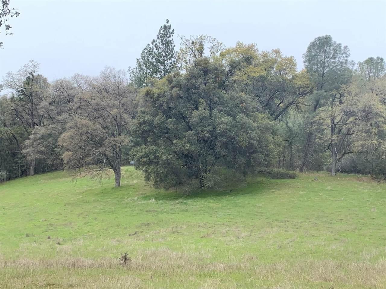 0 Cedar Pines - Photo 1
