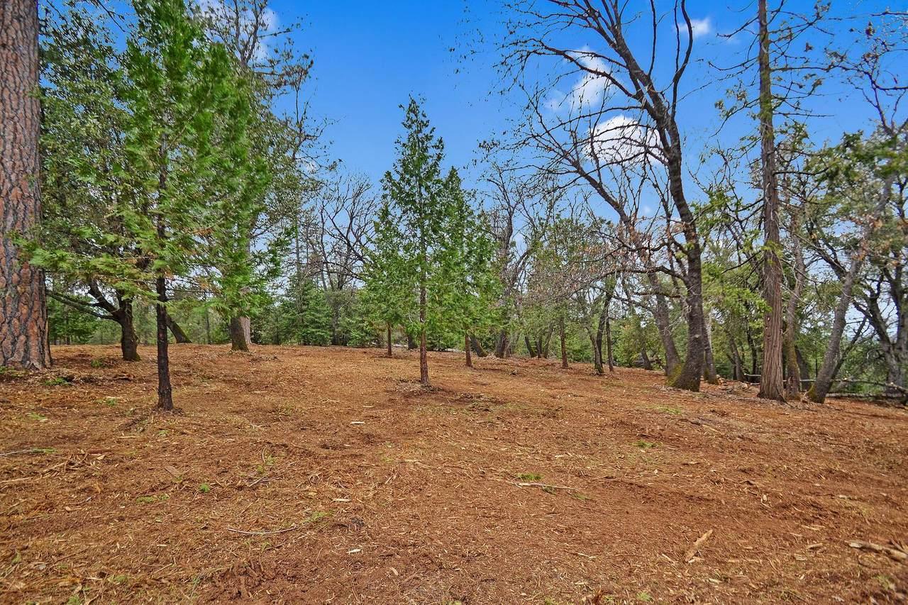 20295 Shake Ridge - Photo 1