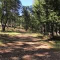 0 Ridgeway - Photo 3