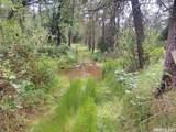 3580 Cedar Creek - Photo 4