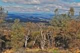 3580 Cedar Creek - Photo 6