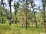3580 Cedar Creek - Photo 7