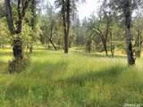 3580 Cedar Creek - Photo 8