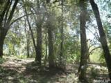 18351 View Circle - Photo 32