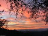 22872 Rhubarb Place - Photo 1
