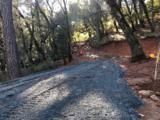 12145 Rainbow Road - Photo 1