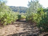 11051 Upper Previtali Road - Photo 11